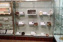 Bob Campbell Geology Museum, Clemson, United States