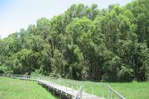 Fogg Dam Conservation Reserve, Humpty Doo, Australia