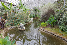Buckfast Butterfly Farm and Dartmoor Otter Sanctuary, Buckfastleigh, United Kingdom