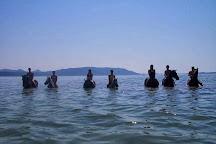 Konjicki Klub Vencel, Biograd na Moru, Croatia