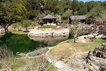 Cedar Lakes Woods And Gardens, Williston, United States