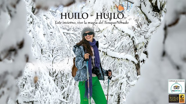 Huilo Huilo Reserva Biológica
