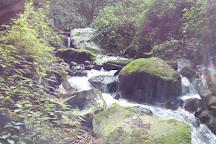 Bosque Esmeralda, Amecameca, Mexico