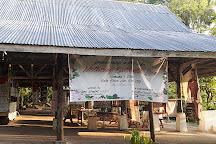 Monfort Bat Sanctuary, Samal Island, Philippines