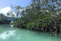 The Kayak Shack, Islamorada, United States