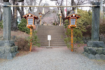 Arakurayama Sengen Park, Fujiyoshida, Japan