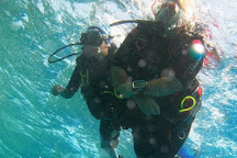 Colona Divers Marsa Alam, Marsa Alam, Egypt