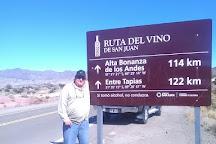 Alta Bonanza De Los Andes, Calingasta, Argentina