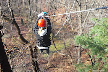 Common Ground Canopy Tours, Oberlin, United States