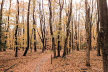 Pigeon Creek County Park, West Olive, United States