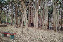 Rajiv Gandhi Children's Park, Idukki, India