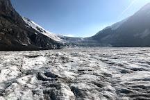 Columbia Icefield Glacier Adventure, Jasper National Park, Canada