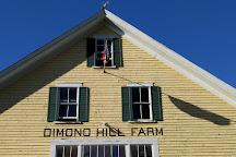 Dimond Hill Farm, Concord, United States