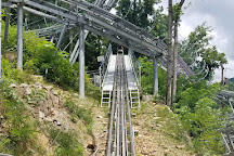 Rowdy Bear Mountain, Gatlinburg, United States
