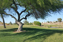 Coyote Lakes Golf Club, Surprise, United States