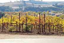 Ecluse Wines, Paso Robles, United States