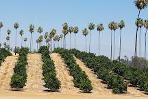 California Citrus State Historic Park, Riverside, United States