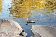 Phoenix Park, Eau Claire, United States