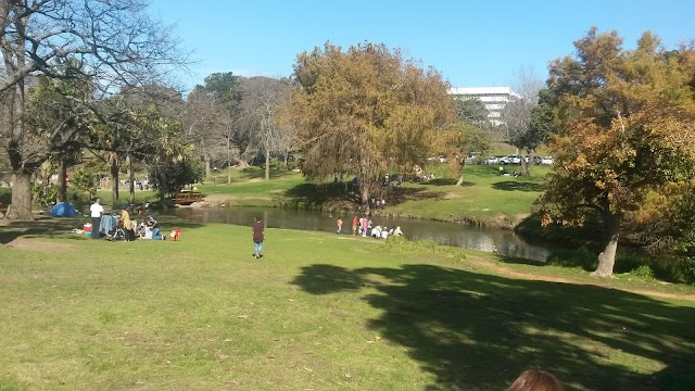 Wynberg Park