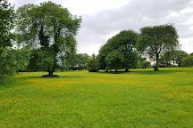 The Dark Hedges, Ballymoney, United Kingdom