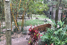 Naples Zoo at Caribbean Gardens, Naples, United States