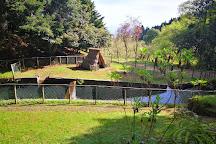 Parque Florestal das Queimadas, Santana, Portugal