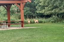 Sandy Ridge Reservation, North Ridgeville, United States