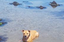 Burns Reserve (Altona Dog Beach), Altona, Australia