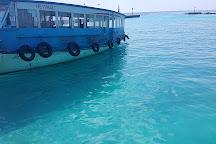 Whale Submarine Maldives, Male, Maldives