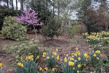 Moore Farms Botanical Garden, Lake City, United States