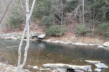 Casselman River Bridge State Park, Grantsville, United States