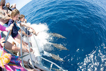Ningaloo Blue Dive, Exmouth, Australia