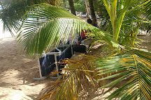 Coconut Tree Divers, West End, Honduras