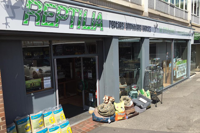 Visit Reptilia Reptile Rescue on your trip to Ossett