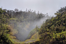 Steam Vents, Pahoa, United States