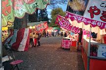 Gojyo Shrine, Yugawara-machi, Japan