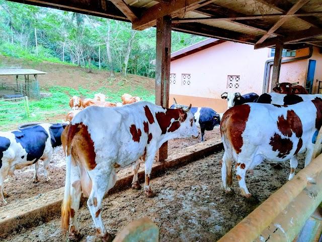 Lycée agricole