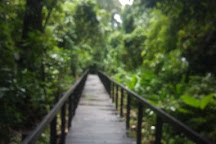 Cahuita Tours, Cahuita, Costa Rica
