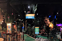 Treetop Adventure Golf, Cardiff, United Kingdom