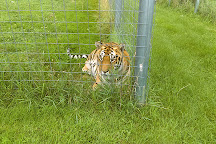 Wisconsin Big Cat Rescue, Rock Springs, United States