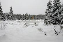 Prince Albert National Park, Waskesiu Lake, Canada