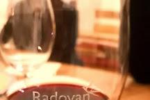 Vina Radovan, Radovani, Croatia