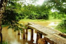 Gal Palama (Stone Bridge) over Malwathu Oya, Anuradhapura, Sri Lanka