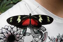 La grange aux papillons, Chimay, Belgium