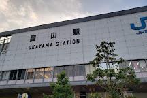 Okayama Ichi Ban Gai, Okayama, Japan