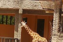 Emperor Valley Zoo, Port of Spain, Trinidad and Tobago
