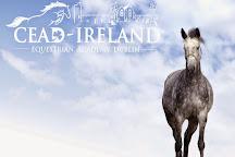 Coolmine Equestrian Centre, Dublin, Ireland