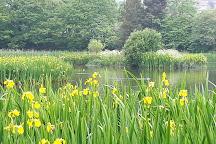 Bingham's Pond, Glasgow, United Kingdom