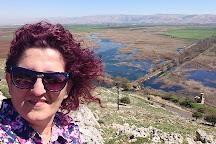 Aammiq wetland, Saghbine, Lebanon