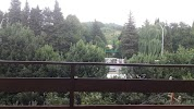 ОРХИДЕЯ, гостиница, улица Чкалова на фото Сочи